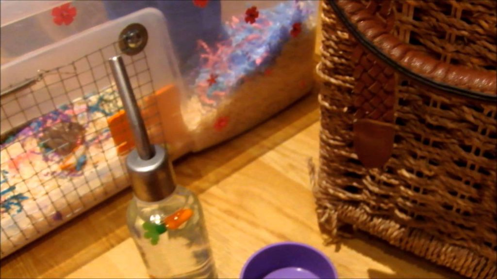 Daily hamster care .