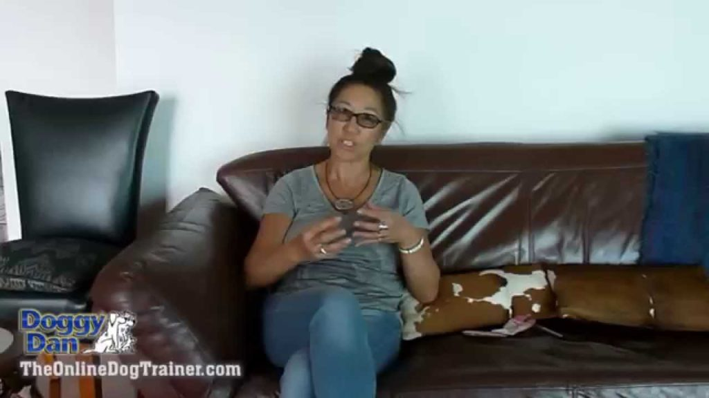 Dog training video testimonials