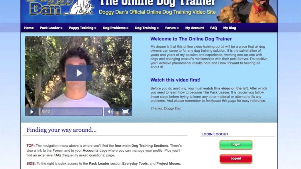 Puppy dog training video