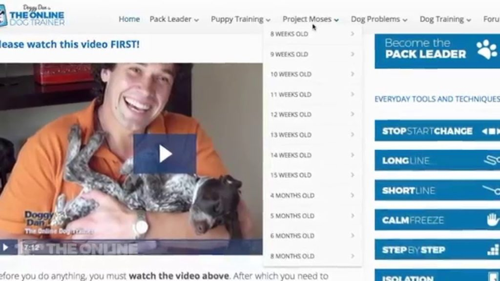 Doggy Dan Review and tour of The Online Dog Trainer