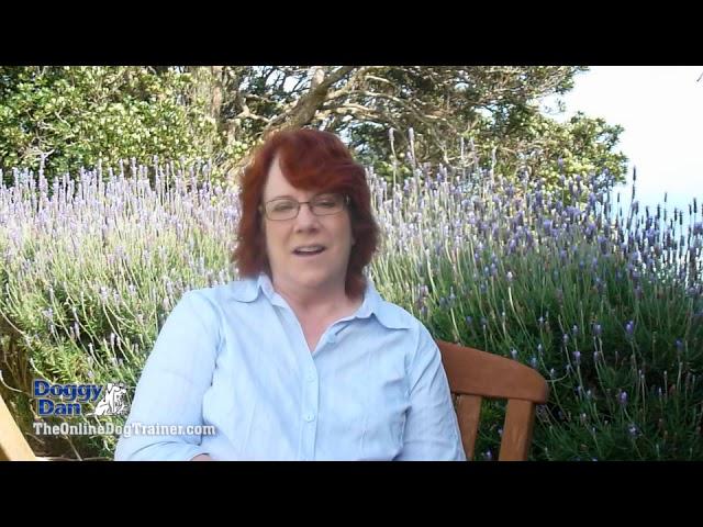 Testimonial Suzi Lyons