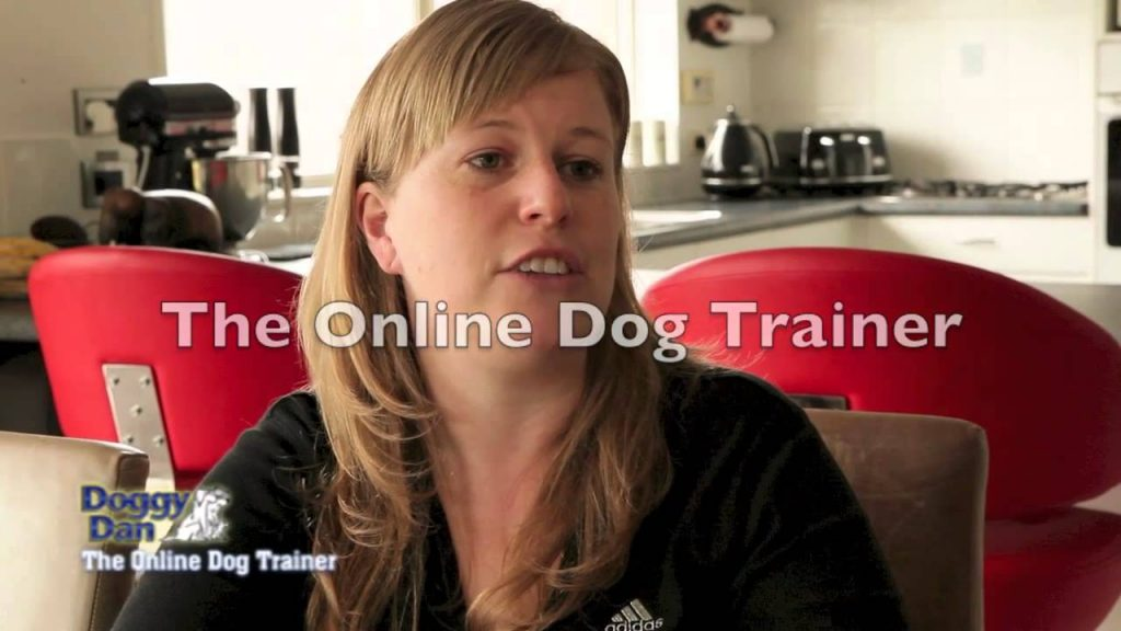 How to stop a dog barking – Testimonial