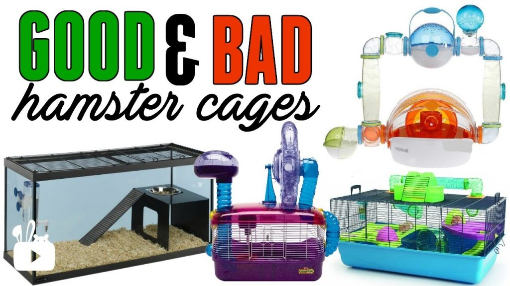 GOOD & BAD hamster cages