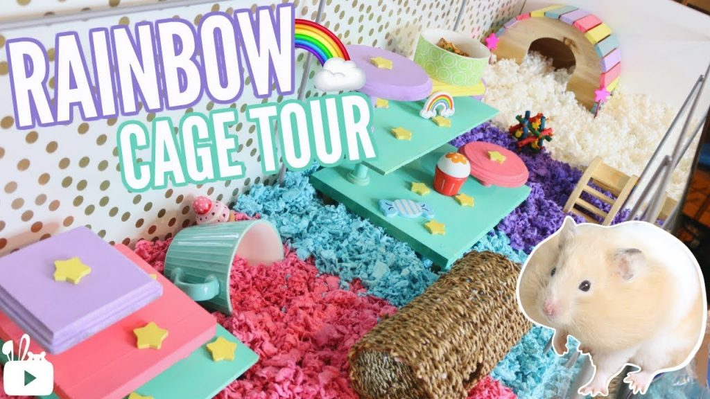 RAINBOW THEMED HAMSTER CAGE! 🌈